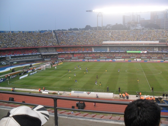 Brazil v South Africa (Morumbi - 7th September)